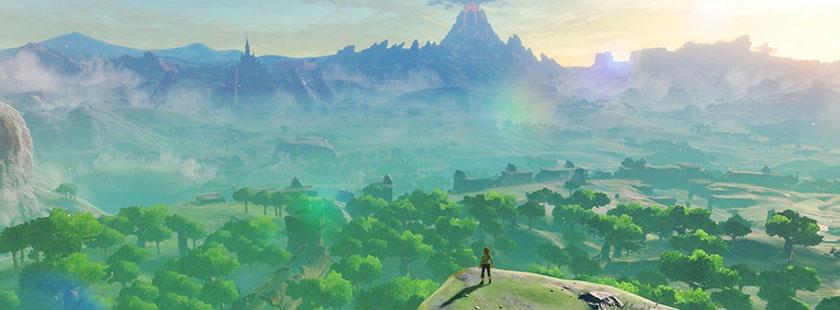 Zelda overlooking landscape Image