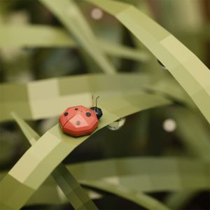 Low Poly art ladybug