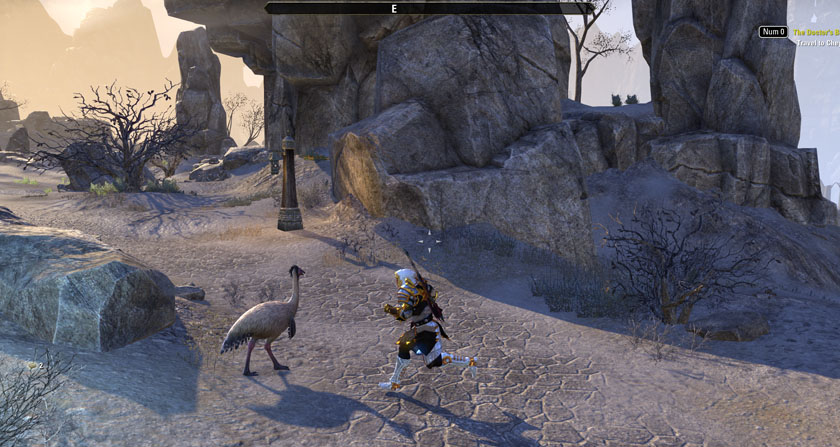 Elder Scrolls Online ESO Small Things